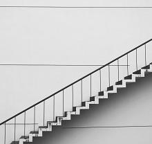 あなたの会社はどの段階?「組織のライフサイクルモデル」とは